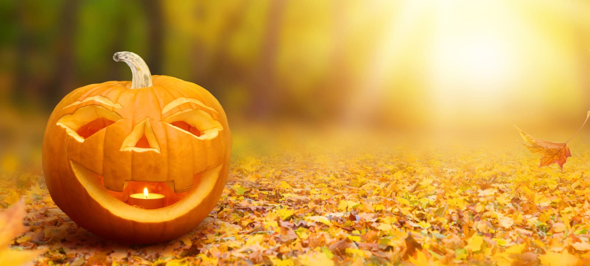 Halloween celebrations in Mayfair
